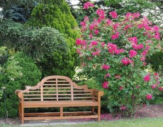 Декоративные элементы сада: скамейка