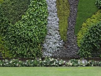 Как зонировать пространство с помощью вертикального сада