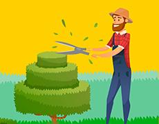 Как правильно подрезать декоративные кустарники