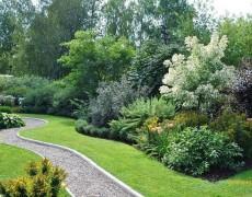 Садовые композиции одностороннего обзора