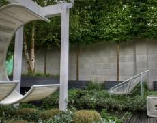 Деревья на шпалерах: идеи садового дизайна