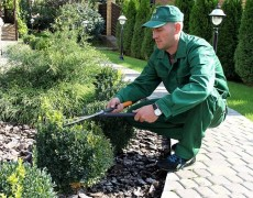Профессиональный уход за декоративным садом