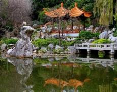 Японский сад – изучаем традиции, соблюдаем тонкости