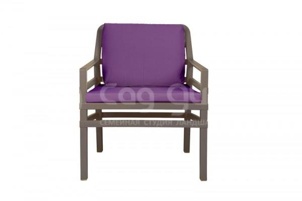 тортора фиолетовый