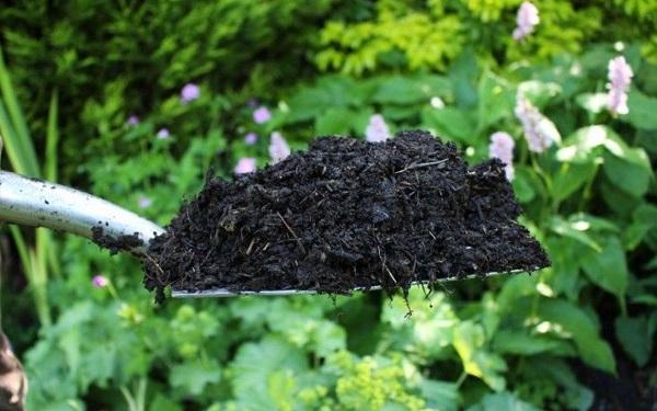 Агротехнические приемы улучшения почвы
