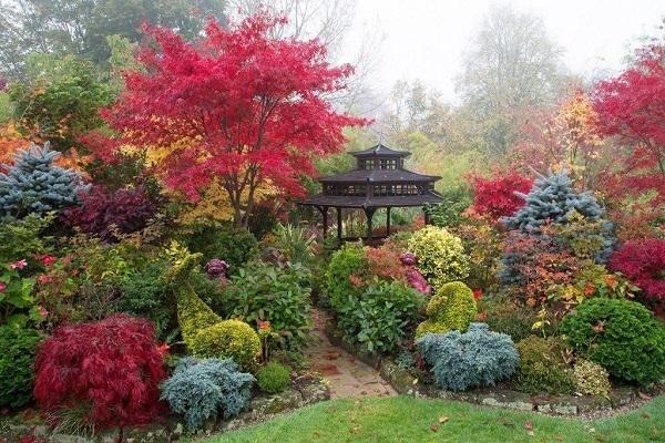 Сад четырех сезонов
