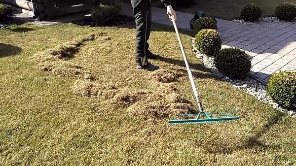 Весенняя уборка газона